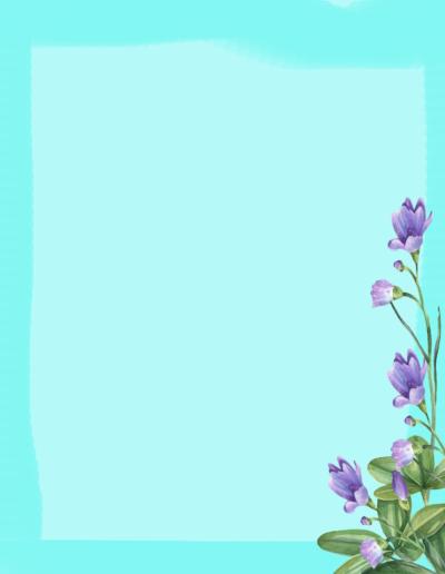 Botanical12