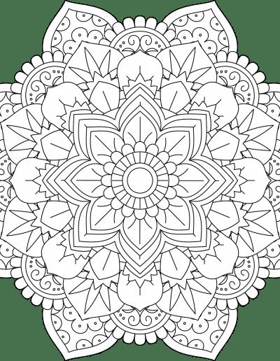 FloralMandala6