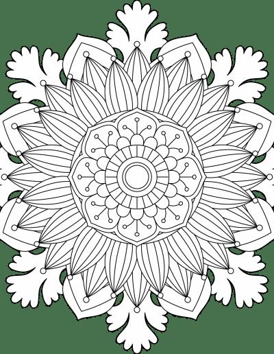 FloralMandala8