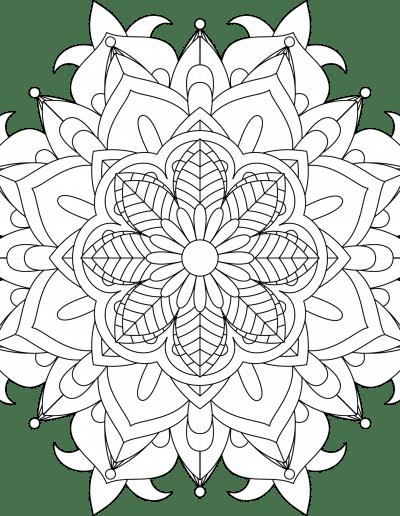FloralMandala9